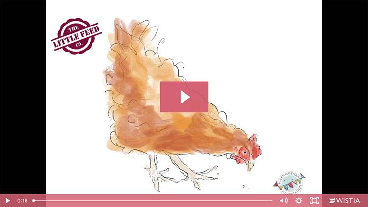 Social media timelapse video - Helen Wiseman Illustration services