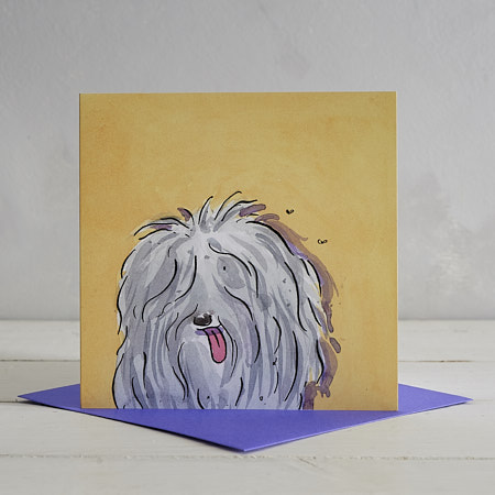 Buy Old English Sheep Dog Greetings Card 'Tim' from Helen Wiseman Illustration
